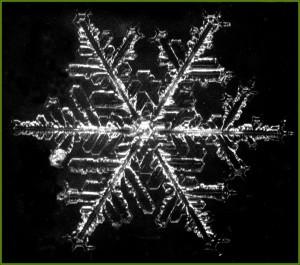 obraz-sniezynka-1